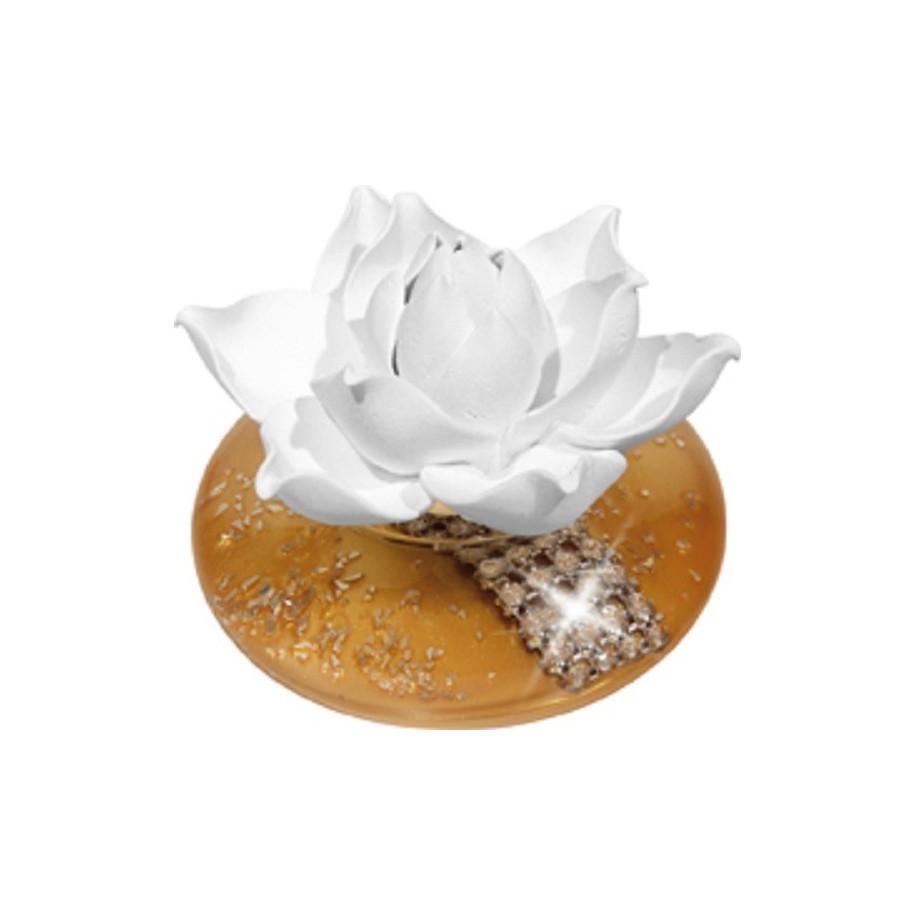 Duftrose White Lotus Sun La Flora Duftlampe